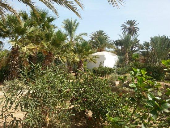 Coucher du soleil sur la piscine photo de sangho club for Chambre a coucher zarzis