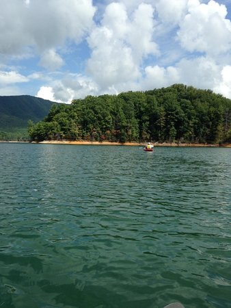 Hampton, TN: My view from a kayak on Watauga Lake.