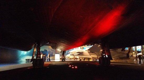 Air Zoo: SR-71