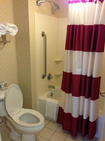 Residence Inn Tampa Westshore/Airport: Bathroom