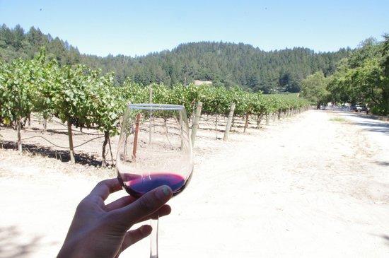 Casa Nuestra Winery and Vineyards: Walking through the vineyards