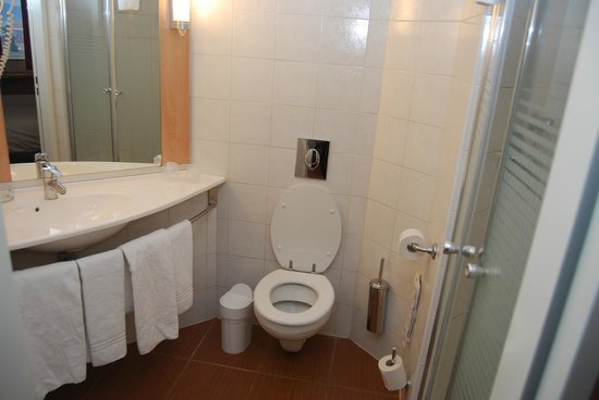 Hotel Ibis : Bathroom