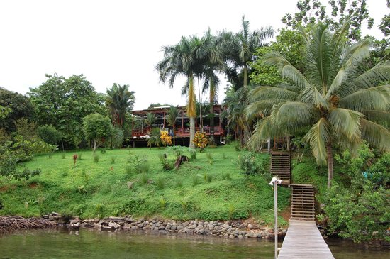 Bambuda Lodge : The Lodge from the Waterfront