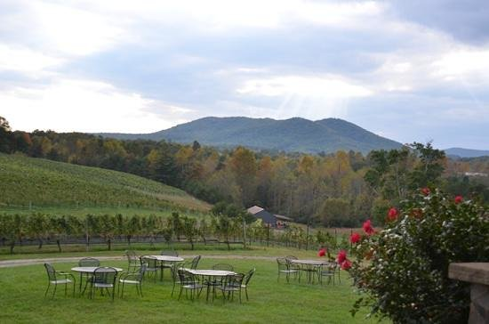 Round Peak Vineyard: View from Porch