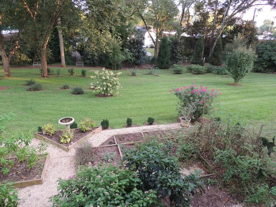 Brady Inn : Garden and Back Yard, viewed from covered walkway