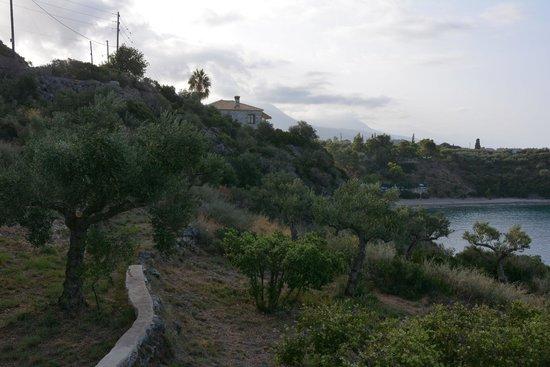كاتيكيز مانيس: View of beach from hotel