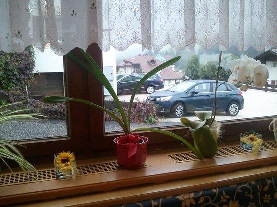 Garni Floreal: From dinning room