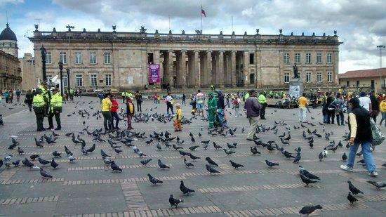 Capitolio Nacional : O Capitolio decorado pelos pombos da praça Bolivar