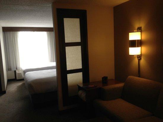 Hyatt Place Charlotte Airport/Tyvola Road : Living room