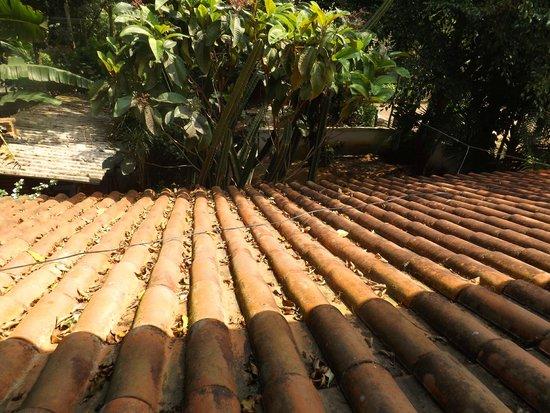 Overnativa Green Hostel: vista da varanda
