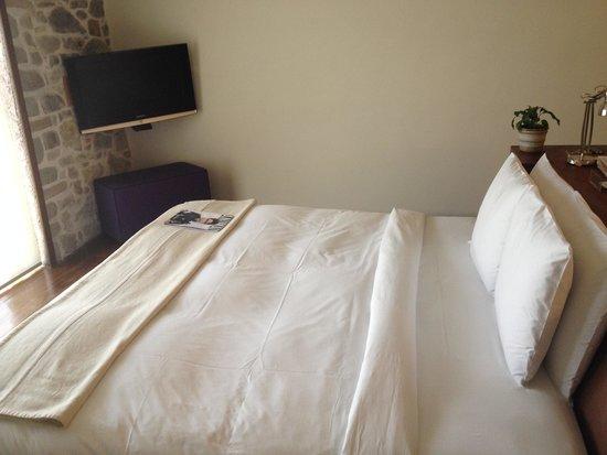La Purificadora: Room M (not a suite)