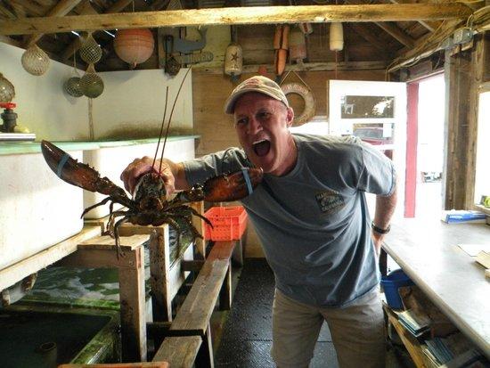 Ford's Lobster: Dinner!