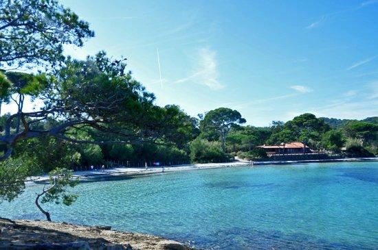 Porquerolles Island, France: La plage d'Argent