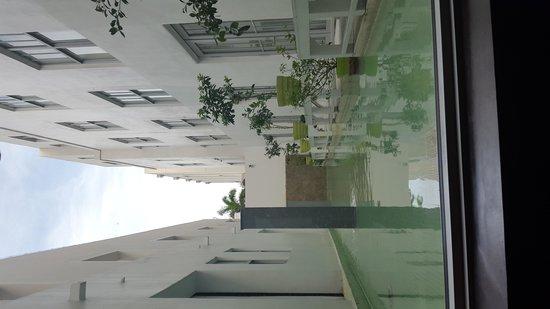 Clinton Hotel South Beach: reflective pool