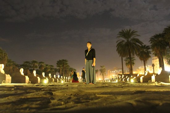 Avenue of Sphinxes : Avenue at night