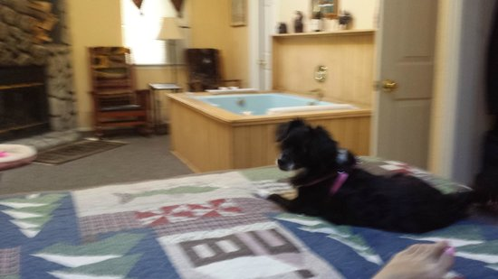 Pine Knot Guest Ranch: Jacuzzie tub and Pet friendly Dixie