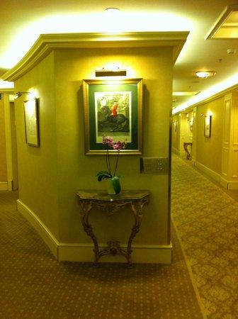 Grand Hotel Wien : corridoio
