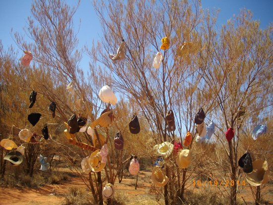 Chifley Alice Springs Resort : Hat tree
