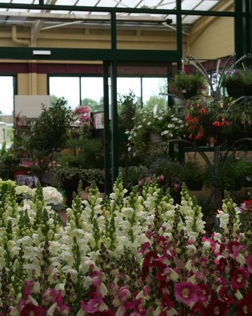 Johnstown Garden Centre 2020 All You Need To Know Before You Go With Photos Tripadvisor