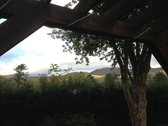 Brookside Mountain Mist Inn: A view from our room