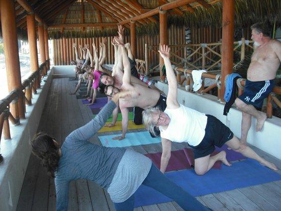 Yoga Vallarta: Yoga to your villa/hotel/condo, please email info@yogavallarta.com