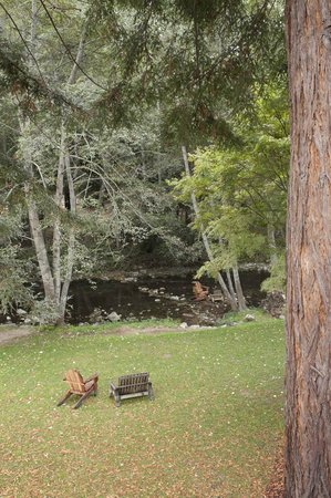 Big Sur River Inn: View from our Room to the River