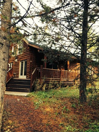The Pines at Island Park: our lovely cabin at the Pines