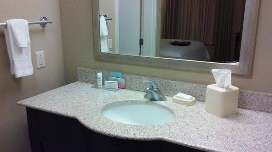 Hampton Inn and Suites Madison West : Bathroom sink