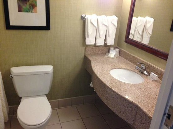 Hilton Garden Inn Chicago Midway Airport: Bathroom