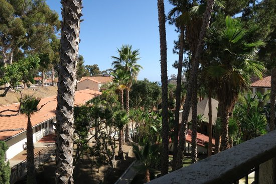Catalina Canyon Resort & Spa: View from room