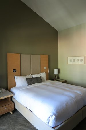 Catalina Canyon Resort & Spa: Room view