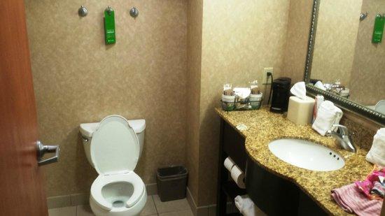 Hampton Inn & Suites Lawton : Restroom