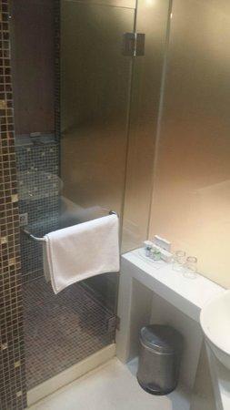 Acesite Knutsford Hotel: Shower