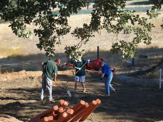 Angels Camp, CA: Sand Volleyball Court