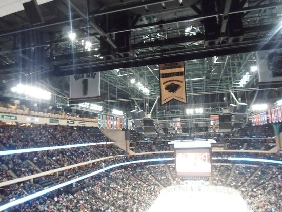 Xcel Energy Center: rafters