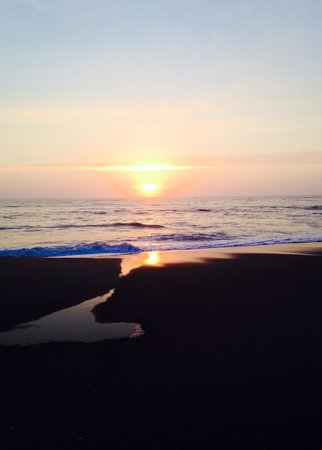 Shoreline Oceanfront Rooms and Suites: Sunrise day of wedding