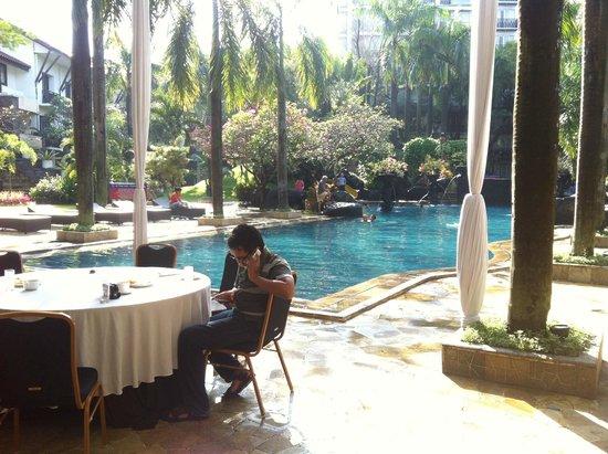 Novotel Surabaya Hotel and Suites: Pool