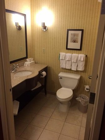 Comfort Suites Helena: Suite Bathroom
