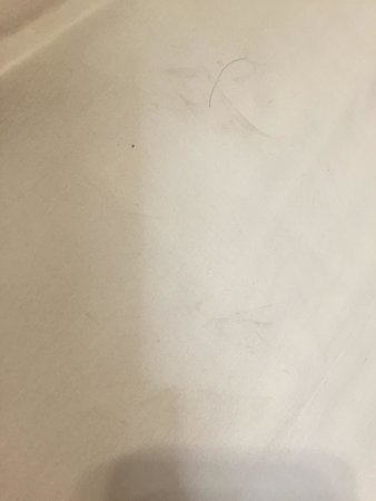 Ramada Limited Redondo Beach: Stained and dirty pillow