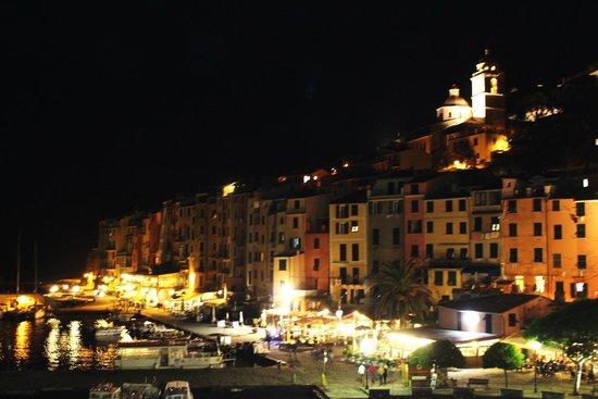 Vista dalla terrazza del ristorante - Picture of Palmaria Restaurant ...