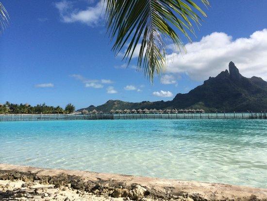 Bora Bora Travel Agent Uk