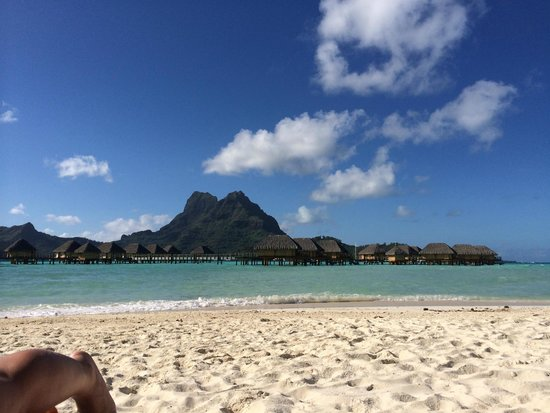 Bora Bora Pearl Beach Resort & Spa: Lagoonarium - escursione bora bora