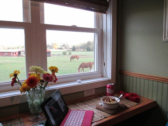 The Cottage at Ravens Roost Farm: Breakfast with a view
