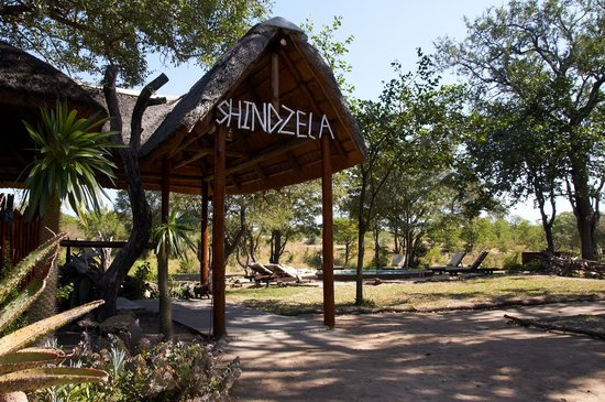 Shindzela Tented Camp: entrance, pool and boma shindzela