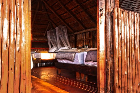 Shindzela Tented Camp: entrance to sleepout hide shindzela