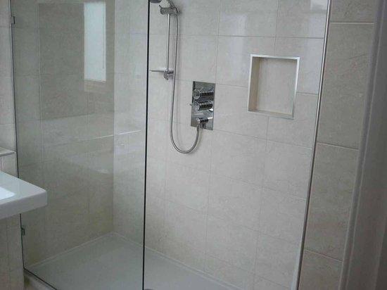 Ascot House: Shower