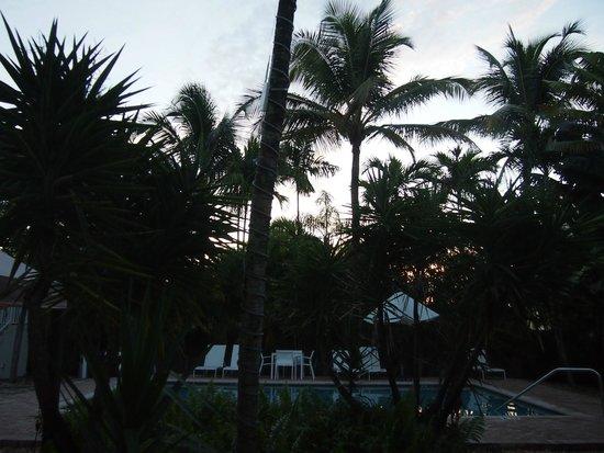 Cocobelle Resort: sunrise