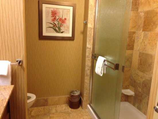 Hampton Inn Oxford University Area: Shower
