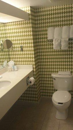 Hampton Inn Ft. Lauderdale /Downtown Las Olas Area, FL.: Clean bathroom