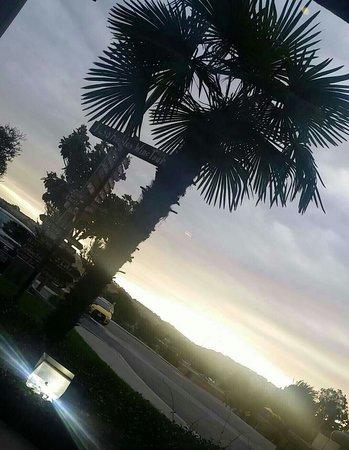 هامبتون إن آند سويتس باسو روبلز: Beautiful Paso Robles ♡